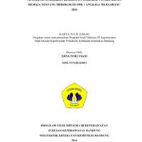 1 COVER ERNA.pdf