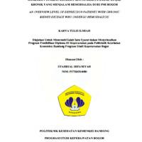 Gambaran Tingkat Depresi Pada Penderita Gagal Ginjal Kronik yang Menjalani Hemodialisa di RS PMI Bogor : An Overview Level Of Depression Patients With Chronic Kidney Desease Who Undergo Hemodialysis