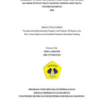Siska Anjianni_cover.pdf