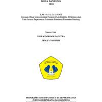 SELLA INDRIANI_cover.pdf