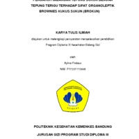 KTI Ajrina Firdaus.pdf