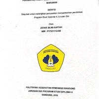 ZIDNIE SILMI.pdf